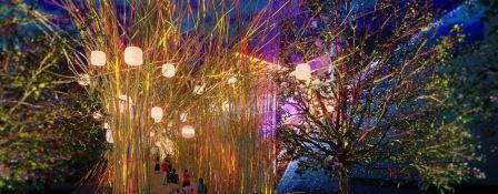 bamboo sculpture, brisbane festival, cave urban, bamboo