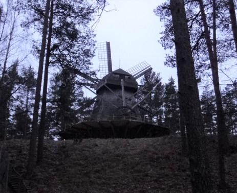 One of 3 windmills