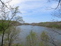 Looking upstream from the Potomac overlook