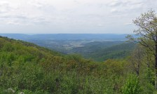 Fishers Gap Overlook