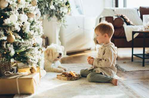 boy in brown hoodie and his pet sitting beside a christmas tree