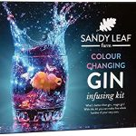Colour Changing Gin Kits