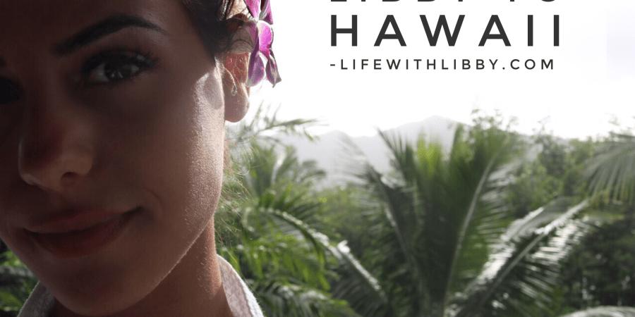 Hawaii Travel Libby Vilner
