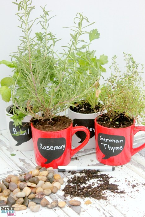 DIY Coffee Mug Herb Garden - Must Have Mom! - HMLP 85 Feature