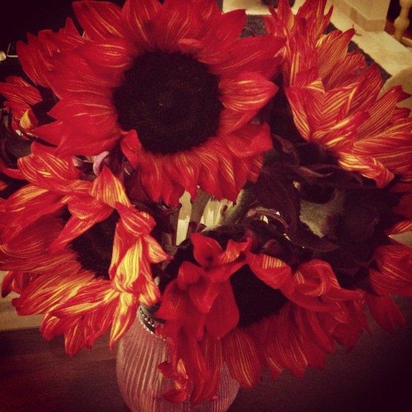 fall sunflowers