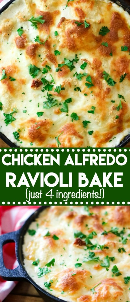 Chicken Alfredo Ravioli Bake is a cheesy crowd-pleasing dinner that has only 4 ingredients! Takes just minutes to get on the table!