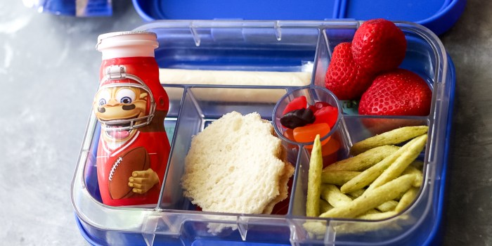 Back to school bento with Danimals