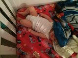 Owen bed