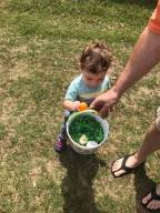 Owen egg hunt