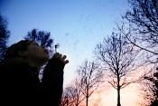 牡羊座新月の願い事 夢を叶える