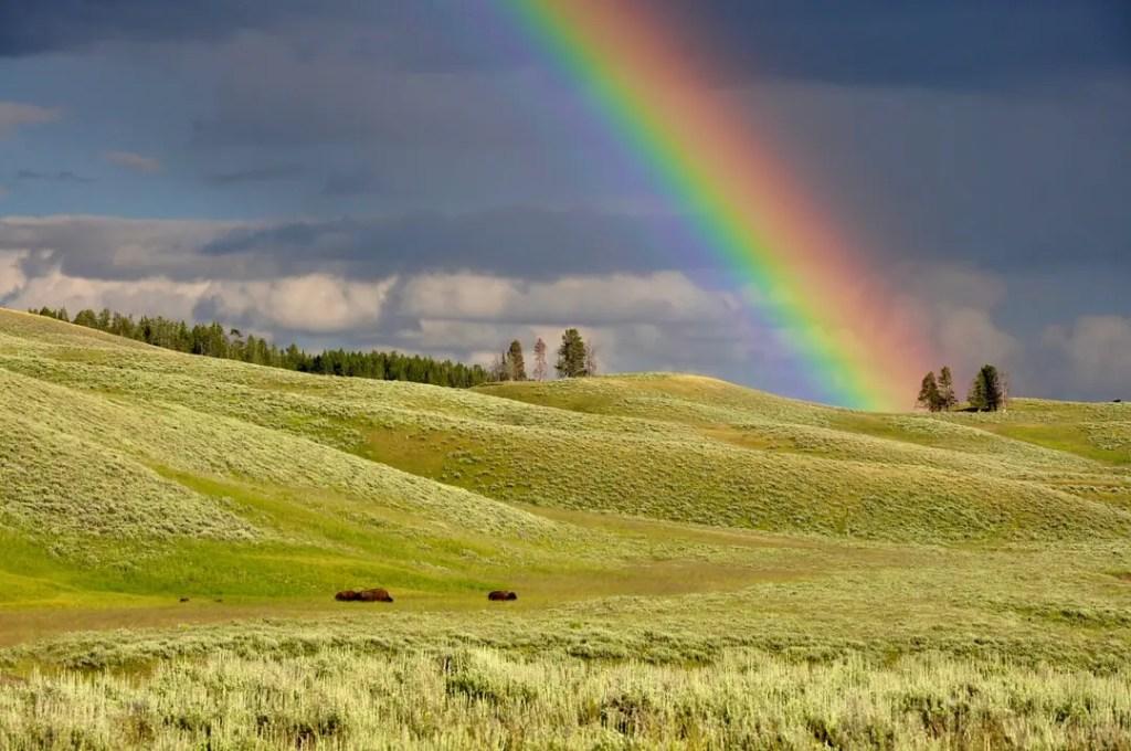 牡牛座4度サビアンシンボル「虹のたもとの金の壺」