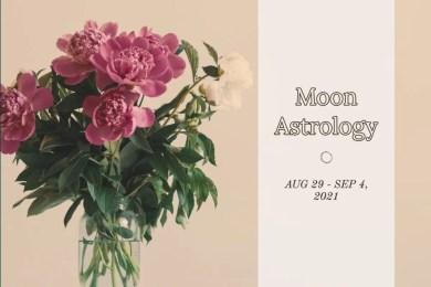 来週の月もよう。8/29〜9/4【双子座の下弦の月、身近な情報と学びの整理を】