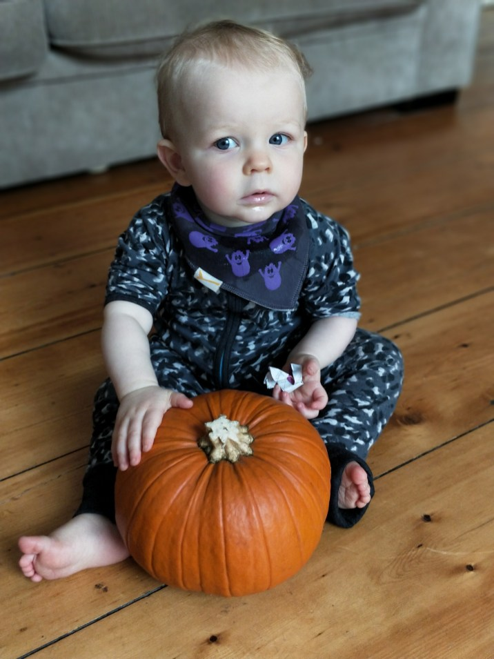 Cautiously Cute with a Pumpkin