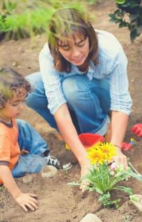 Weekend Wellness Gardening Fun and retirement savings time