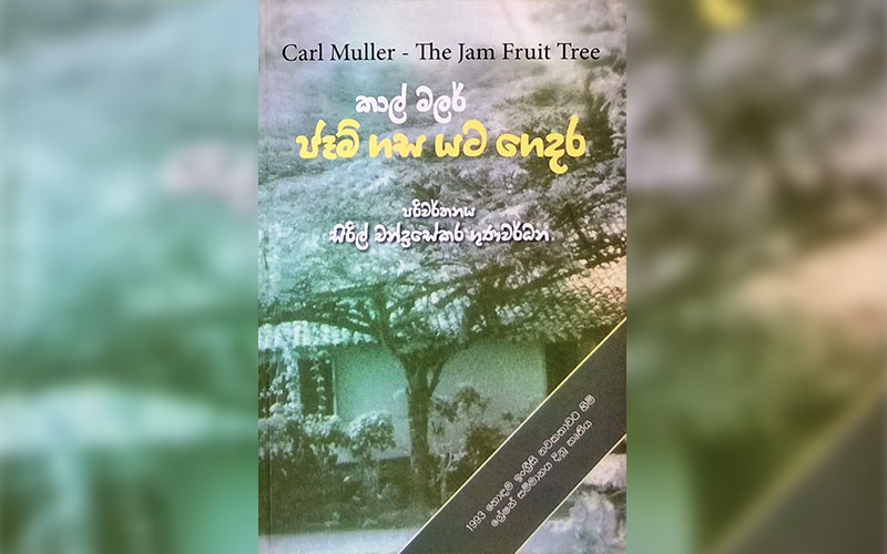 sinhala books for a leisurely read