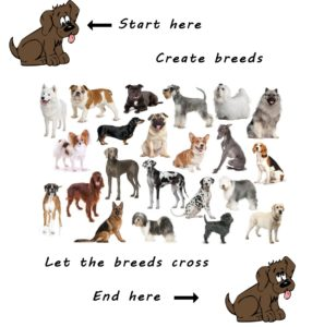 Breeds ≠ species genetic diversity
