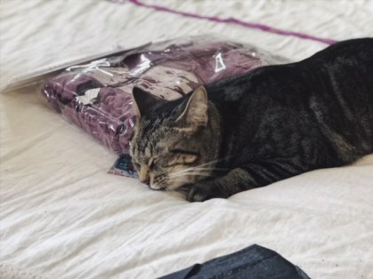 Cat Lady Box Review