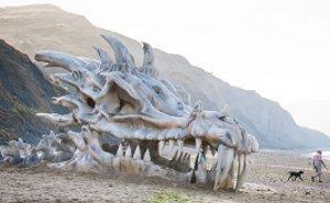 dragon_got