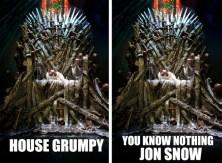 grumpy-cat-game-of-thrones_05