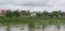 Risque de submersion de l'habitat côtier en Guyane française, Anse Nadeau, 2007 © VMorel