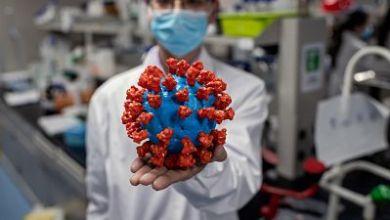 صورة إسبانيا: الدراسة العلمية ستؤكد ما إذا كان لقاح الإنفلونزا يمكن أن يساعد في مكافحة الفيروس كورونا