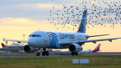 صورة الحكومة المصرية تبكي ومصر للطيران تصرف مرتب موظف بأوروبا شهريا 100 ألف جنية مقابل نفس الشخص في مصر 3 الي 5 ألف