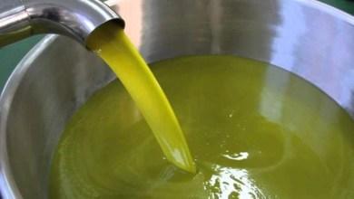 """صورة تنافسية """"الذهب الأخضر"""" المغربي تربك حسابات المزارعين الإسبان"""