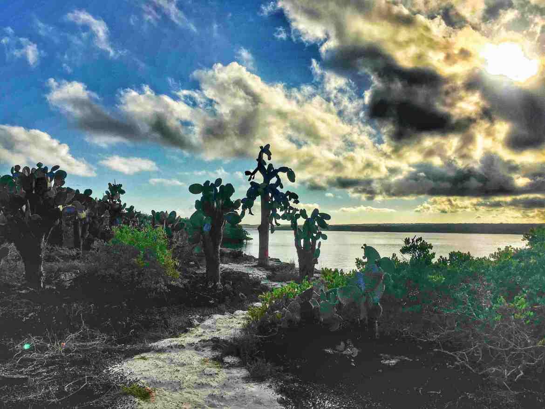 Galapagos es un archipielago