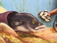 Conger Eel Cornwall