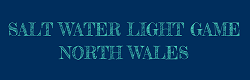 Salt Water Light Game North Wales