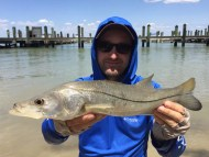Fort Myers Beach Snook