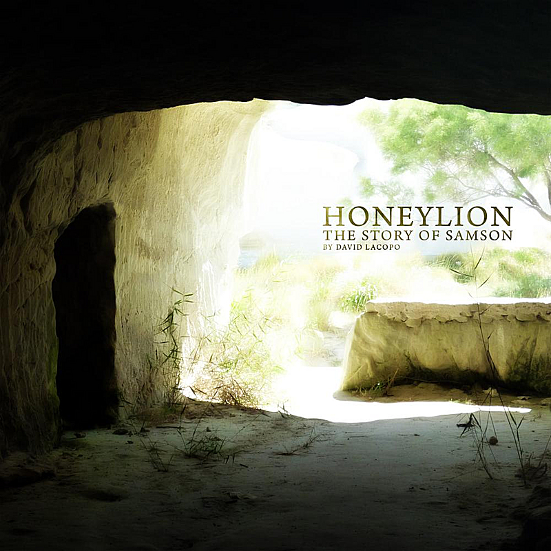 Honeylion: The Story of Samson by David Lacopo