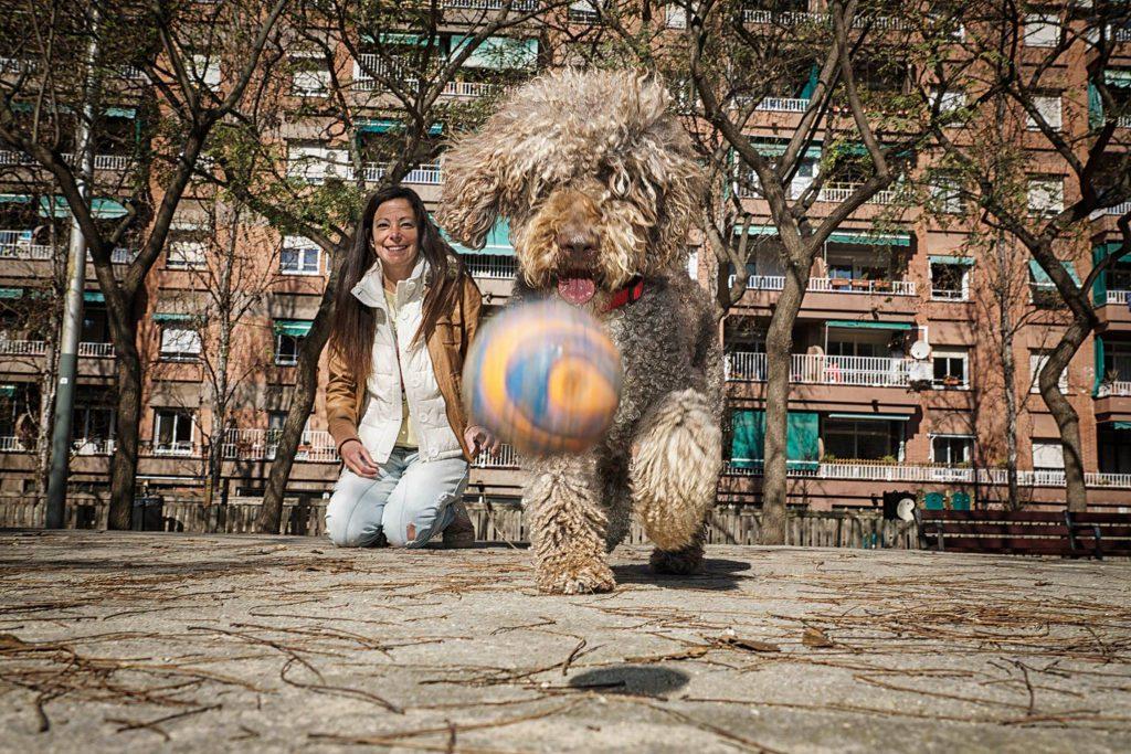 foto mascota 49 lightangel Pedro J Justicia - Album para mascota o con mascota -