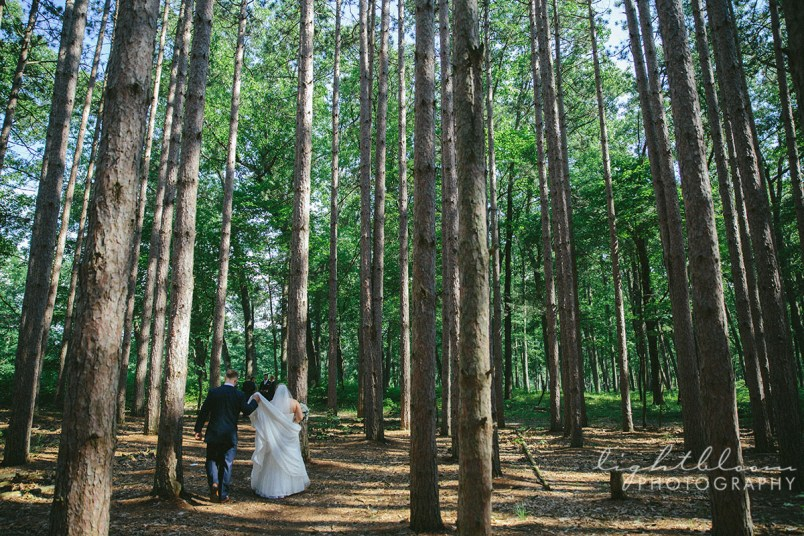 Oak Openings Wedding Photography
