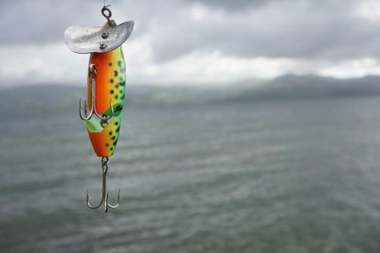 fishing-2665085_960_720.jpg