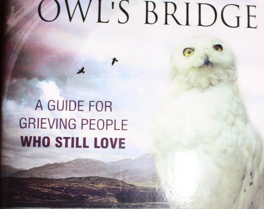 """Crossing the Owl's Bridge"": Book Review"
