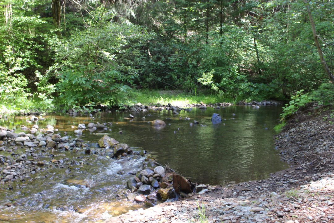 We'll be back soon, dear creek!