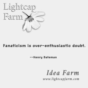 ideafarm2fanaticism
