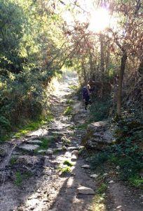 Stephanie navigates a rocky downslope. Photo by Eleanore MacDonald