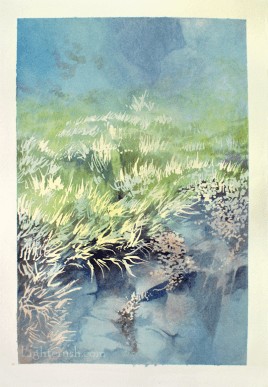 Canada Book 2 Touch - Watercolour on Paper - 19x28.5cm - 2015