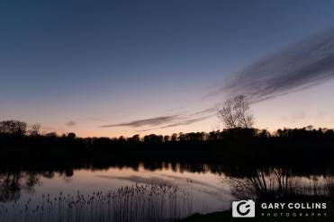 Dromoland. Pic Gary Collins Photography
