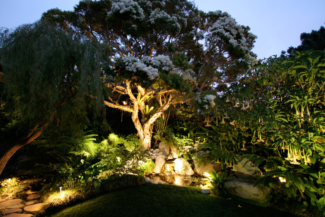 Garden Pond Lighting