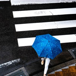 Umbrella and pedestrian crossing blue