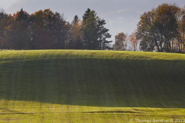 In the last light of one of the last autumn days the shadows in the grass leads the eye up to those coloured trees. Pfannberg, Styria, Austria.