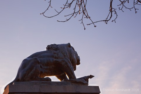 The Hackher lion on top of the Schlossberg, Graz, Austria.