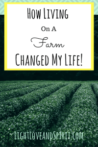 How Living On A Farm Changed My Life