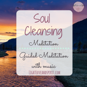 Soul Detox: Clean Living in a Contaminated World - Craig ...