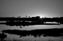 Sunrise, Chincoteague National Wildlife Refuge