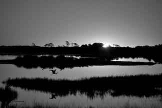 Sunrise, Chincoteague National Wildlife Refuge
