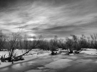 Killbuck Marsh, late winter